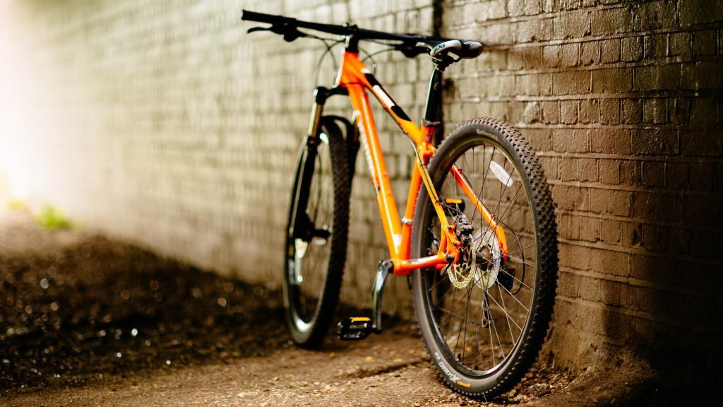 bisikleti kim buldu